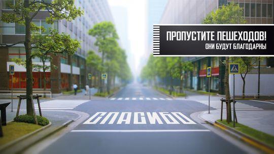 МВД предложило увеличить штрафы для непропустивших пешеходов водителей