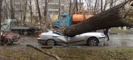 Страховщики отказались компенсировать ущерб от грозы по ОСАГО