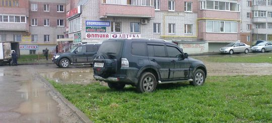 В Москве предложили снизить размер штрафа за парковку на газоне до 2 000 рублей