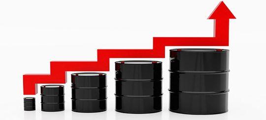 ФАС выступила против повышения акцизов на бензин