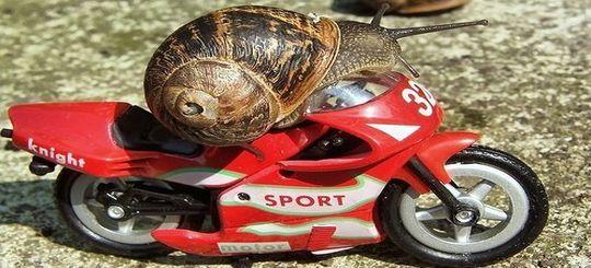 Мотоциклистам запретят быстро ездить и заставят сдавать «город» на экзаменах в ГИБДД