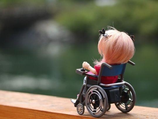 Дмитрия Медведева просят как можно скорее принять изменения правил перевозки детей-инвалидов