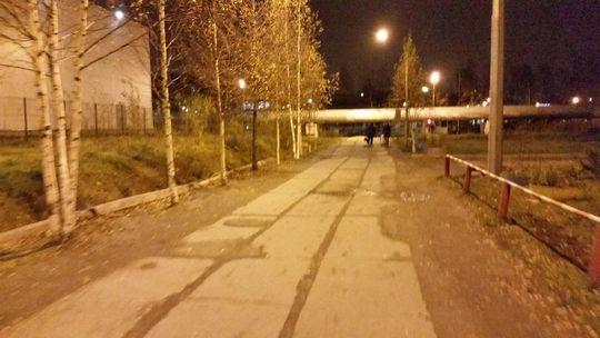 Ремонт дороги с помощью фотошопа в Санкт-Петербурге: чиновник уволен
