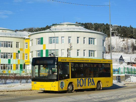 МЧС проведет массовую проверку общественного автотранспорта