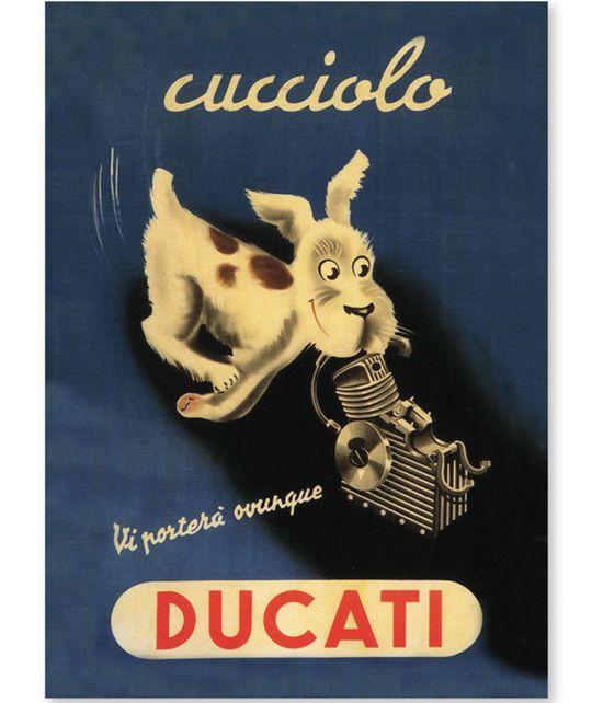 Магнит DUCATI Cucciolo