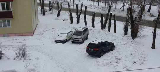Сервис для жалоб на парковку на газонах заработал для жителей Подмосковья