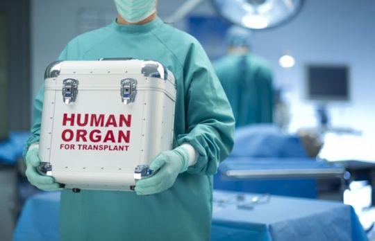 В водительские права могут внести согласие на донорство органов после смертельного ДТП